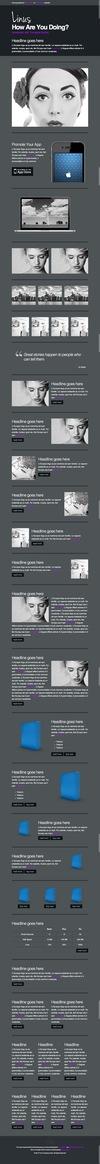 13_linus-newsletter-with-template-builder-v12.__thumbnail
