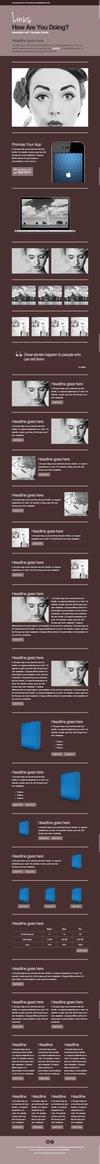 20_linus-newsletter-with-template-builder-v19.__thumbnail