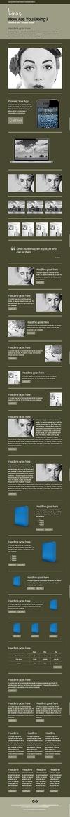 24_linus-newsletter-with-template-builder-v23.__thumbnail