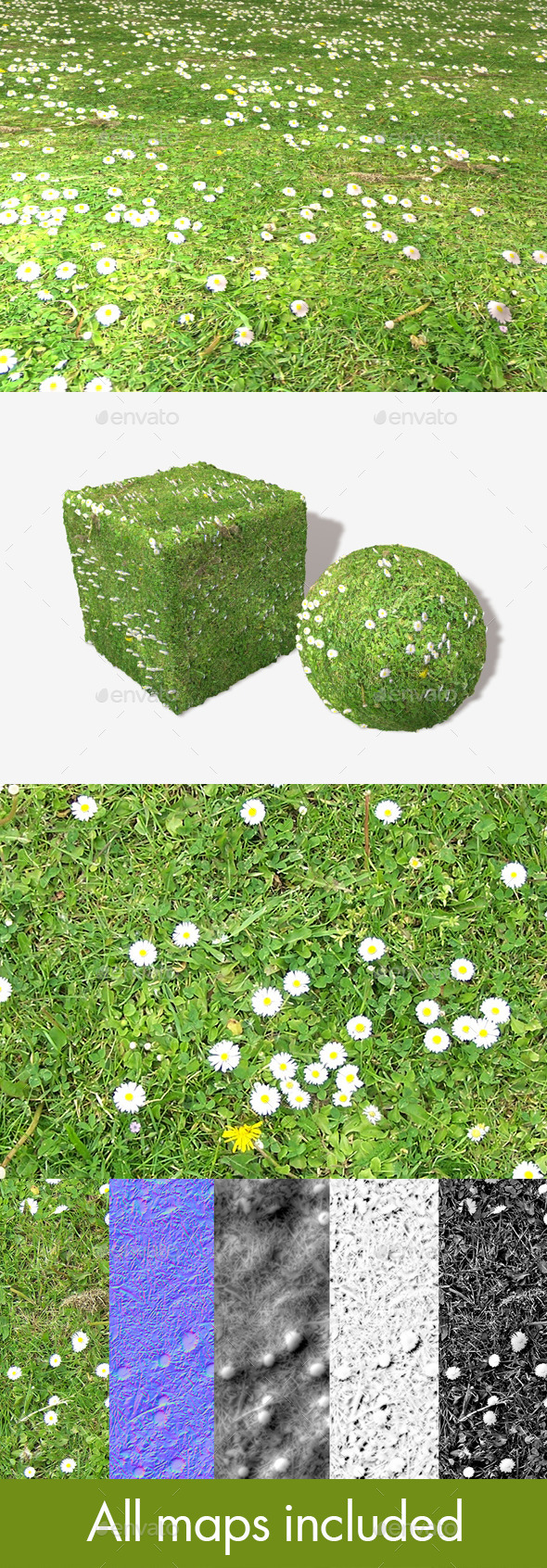 Daisy Lawn Seamless Texture - 3DOcean Item for Sale