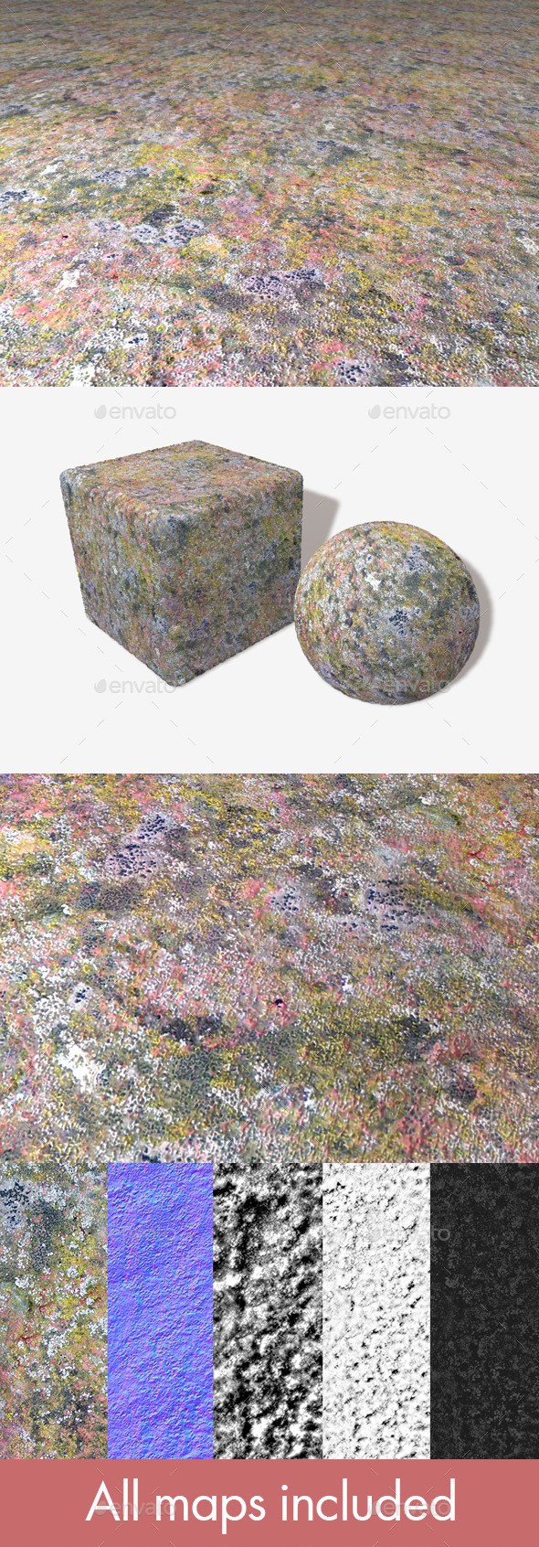 Detailed Moss Mould Seamless Texture