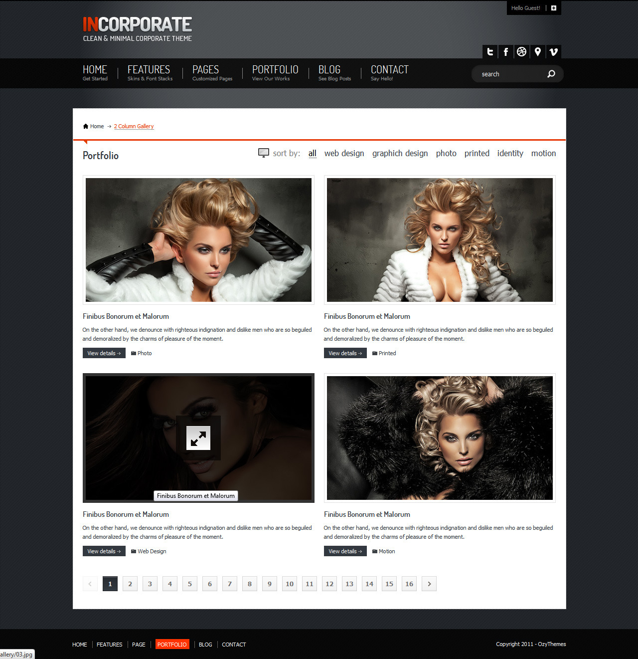 Incorporate Portfolio HTML Template - 2 Column portfolio page and one of the items on hover position