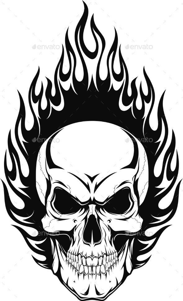 GraphicRiver Human Skull 11765990