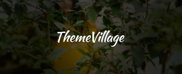 ThemeVillage