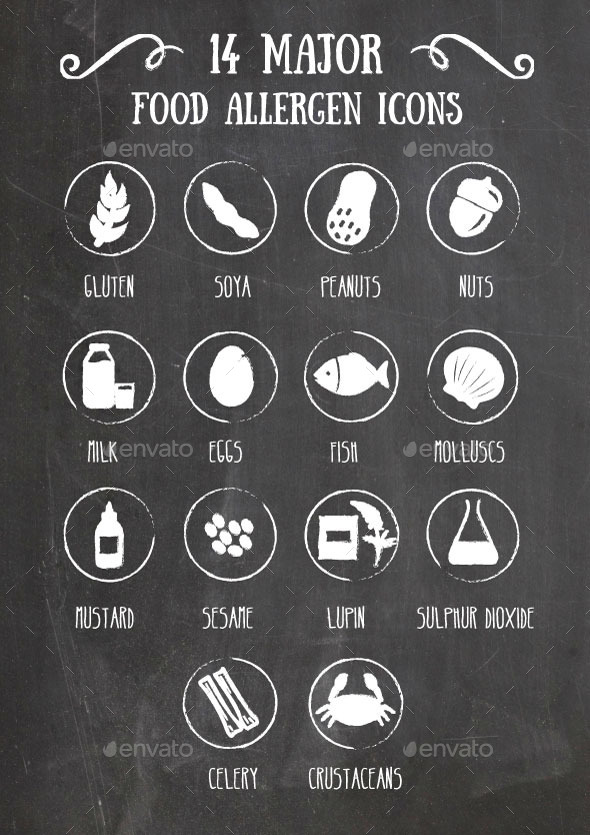 GraphicRiver 14 Main Food Allergen Icons 11768500
