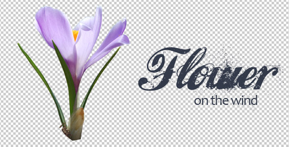 VideoHive Flower On The Wind 11716482