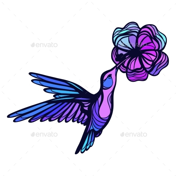 GraphicRiver Flying Tropical Hummingbird On White Background 11776948