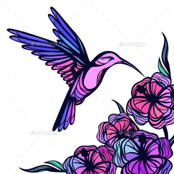 GraphicRiver Flying Tropical Hummingbird On White Background 11776996