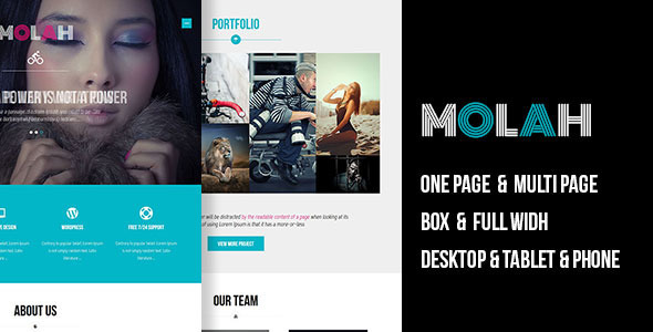ThemeForest MOLAH Responsive Muse Template 11784134