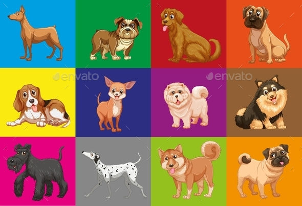 GraphicRiver Dogs in Squares 11786526