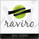 Raviro Logo Template - GraphicRiver Item for Sale