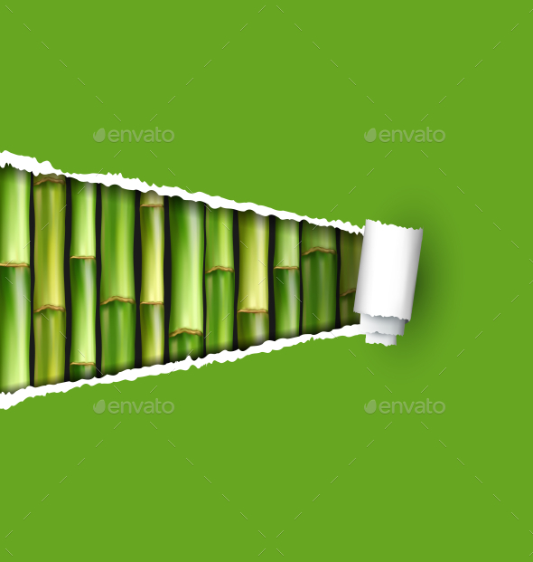 GraphicRiver Green Bamboo Grove with Ripped Paper Frame 11789568