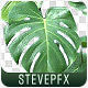 Monstera  - VideoHive Item for Sale