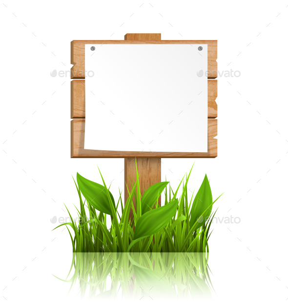 GraphicRiver Wooden Signpost with Grass Paper and Reflection 11797477