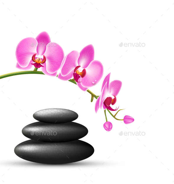 GraphicRiver Stack of Spa Stones with Pink Orchid Flowers 11797846