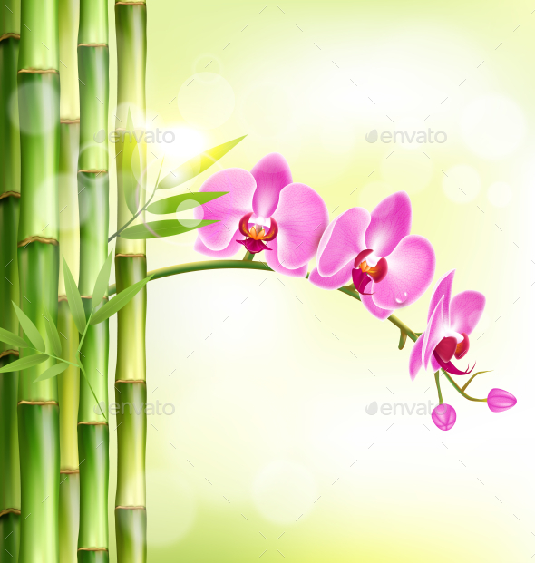 GraphicRiver Pink Orchid with Bamboo and Sunlight on Green 11797857