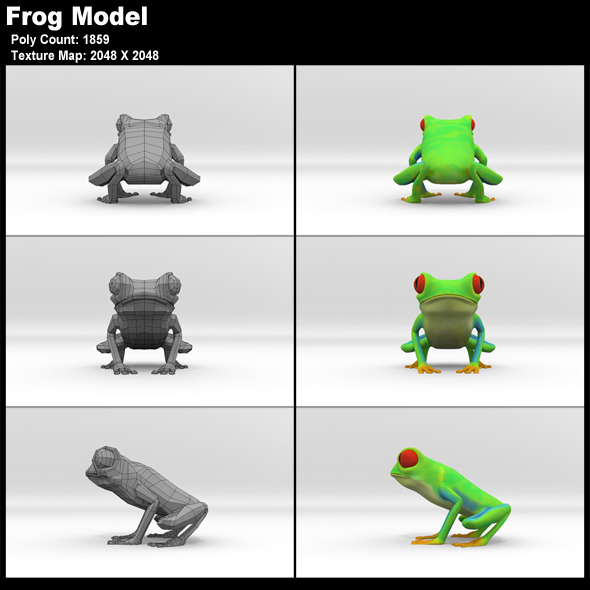 3DOcean Red Eyed Tree Frog Model 11799017