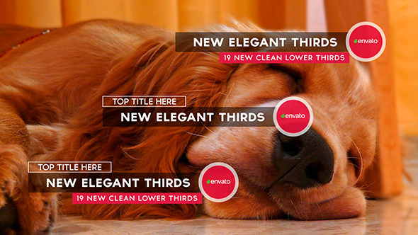 Videohive New Elegant Thirds 11699151