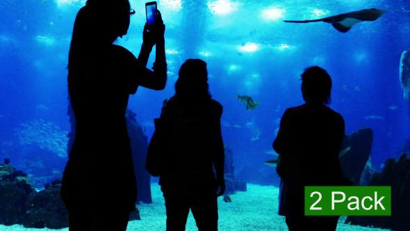 People at the Oceanarium 2-Pack