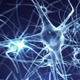 Neurons Logo (2-pack)