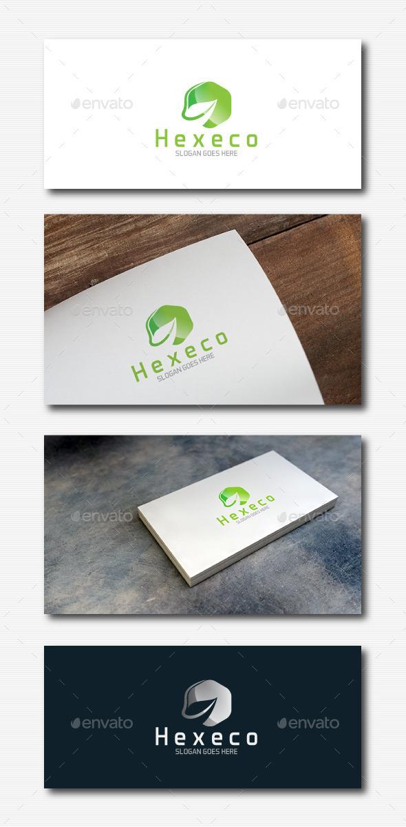 GraphicRiver Leaf Hexagon Logo 11810623