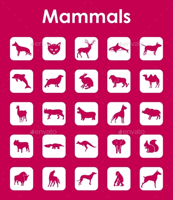 GraphicRiver Set Of Mammals Simple Icons 11813302