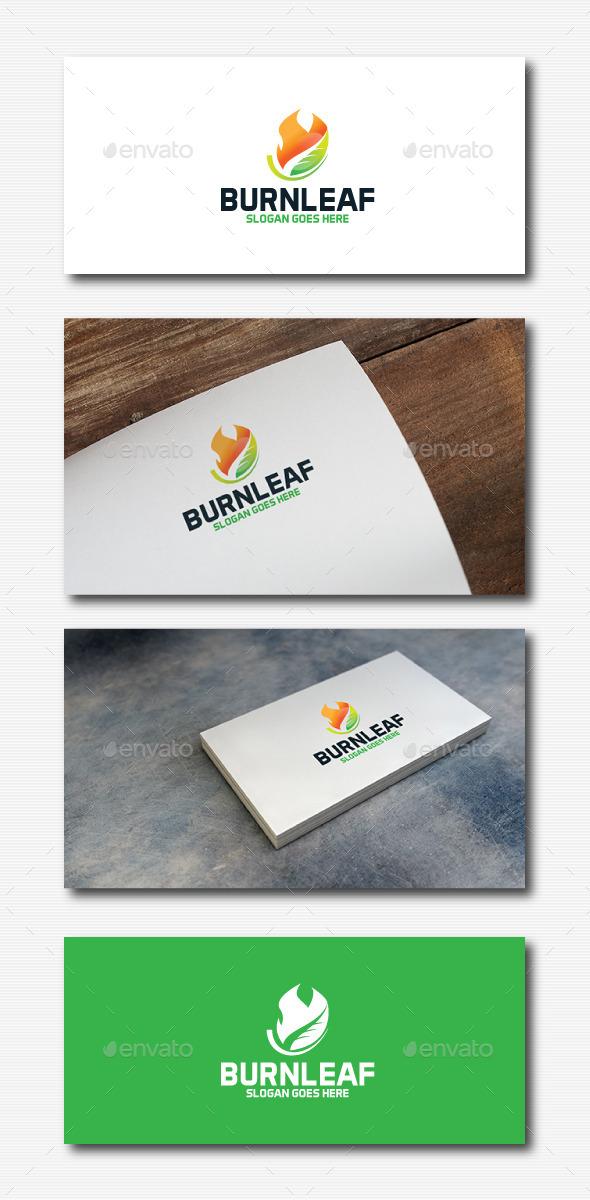 GraphicRiver Burn Leaf Logo 11820485