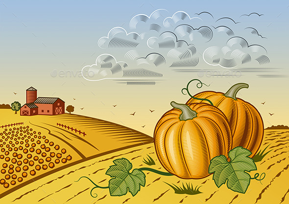 GraphicRiver Pumpkin Harvest Landscape 11828216