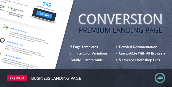 01_Conversion_Premium_Landing_Page.__large_preview.png