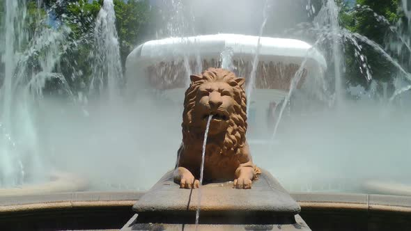 Fountain Of Lions 1