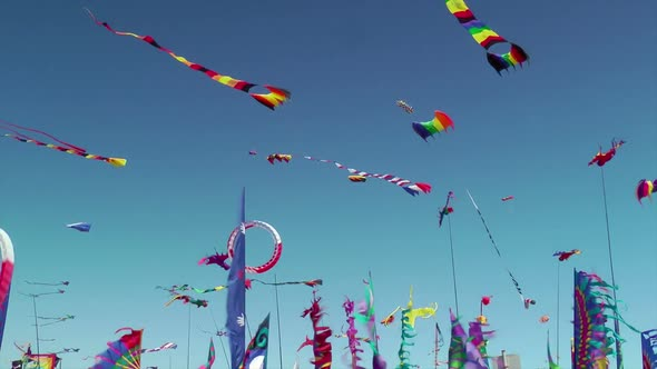 Kites And Banners Blowing In The Wind 2