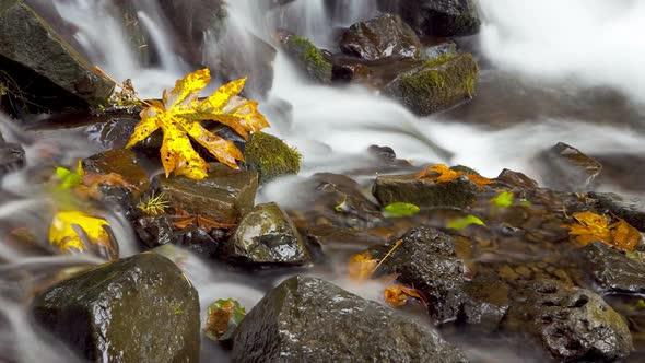 Time Lapse Rushing Water 2