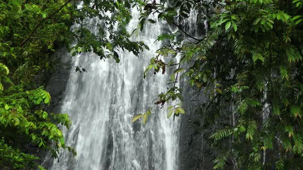 Waterfall In Rainforest 1