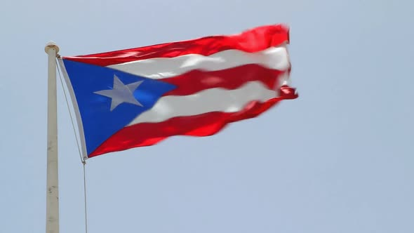 Puerto Rican Flag 2