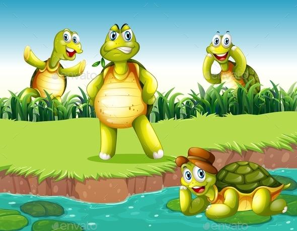 GraphicRiver Turtles 11839564