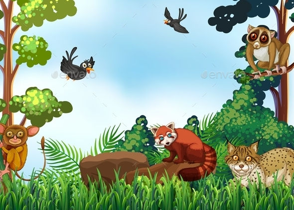 GraphicRiver Animals 11842024