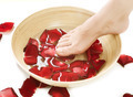 Feet Spa. Pedicure Concept - PhotoDune Item for Sale