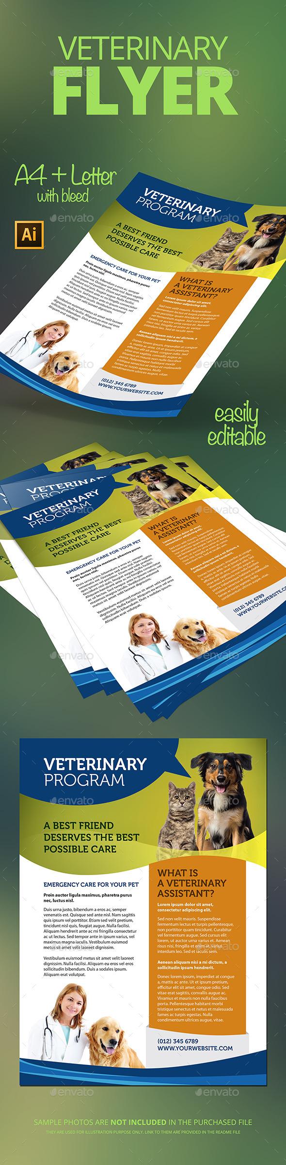 GraphicRiver Veterinary Flyer 11846662