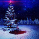 CRISTMAS TREE - VideoHive Item for Sale