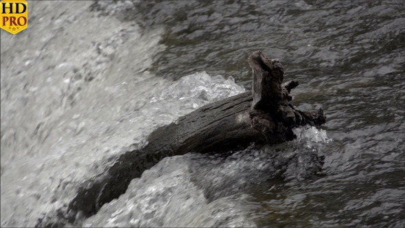 VideoHive Water Rushing on the River 11850566