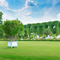 lawn and hedge in a summer park - PhotoDune Item for Sale