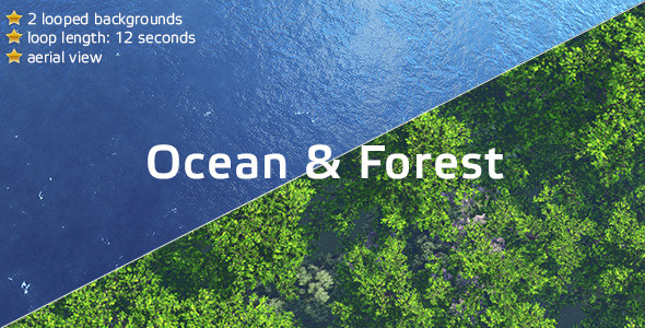 Ocean And Forest