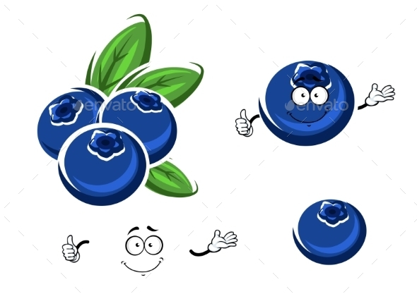 GraphicRiver Cartoon Fresh Blueberry Fruits On White 11863423