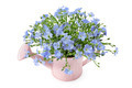 Flax flowers in a watering can - PhotoDune Item for Sale