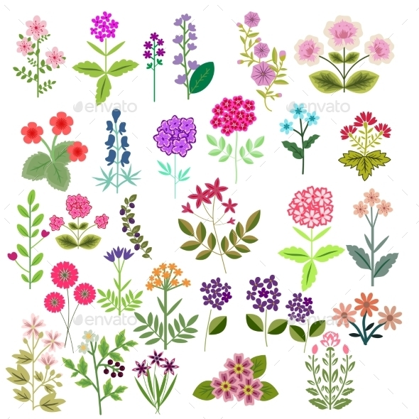 GraphicRiver Flowers Set 11866097