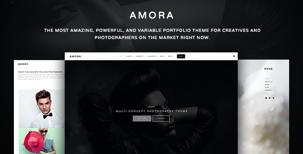 Amora – Creative Responsive Multi-Concept Theme (Photography) Download