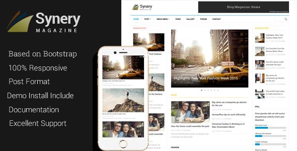 synergy drupal theme