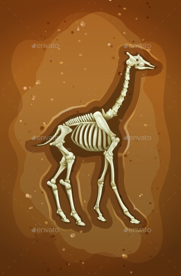 GraphicRiver Fossil 11872532