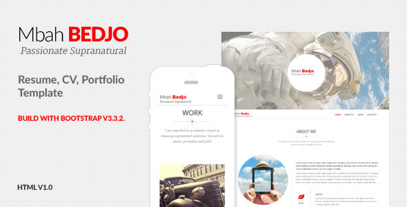 ThemeForest Bedjo Resume CV Portfolio Template 11784859
