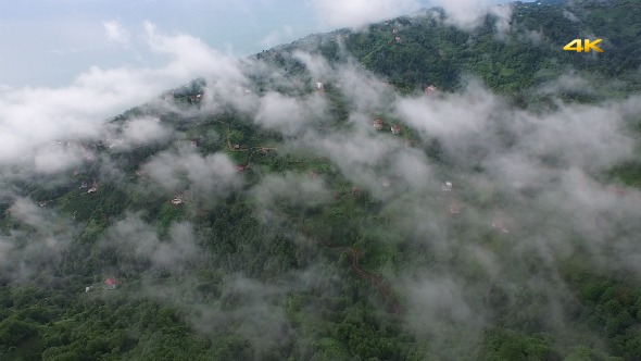 Aerial Flying Over Above Forest on Clouds Fog 2